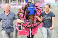 #Timoko 🇫🇷#RichardWesterink won #Elitloppet17 🇸🇪in @Solvalla with @goopbjorn 1.09.0 on 1640 - 14