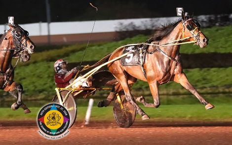 #HomicideHunter 🇺🇸 #MrCantab won #Bcrown18 🏆🇺🇸 @DownsAtMSP - Open Trot Final - 01 - Chris Tully